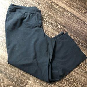 Lane Bryant slacks